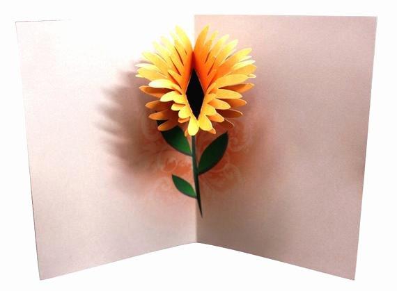 Pop Up Card Template Inspirational Flower Birthday Pop Up Card Template Printable Diy