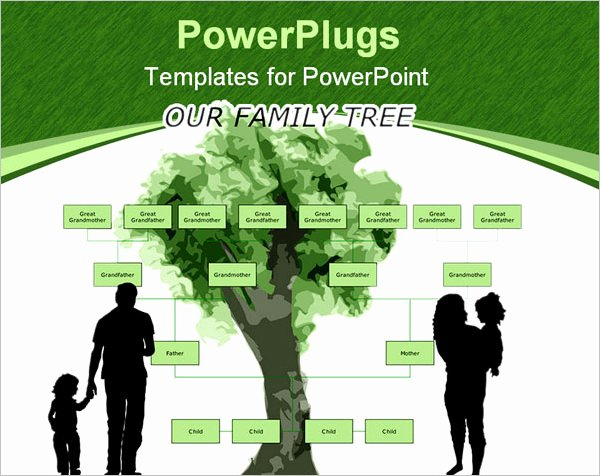 Powerpoint Family Tree Template Awesome 7 Powerpoint Family Tree Templates