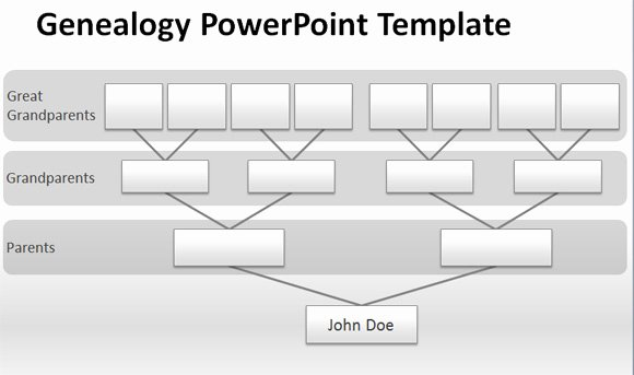 Powerpoint Family Tree Template Awesome How to Make A Management Tree Template In Powerpoint From