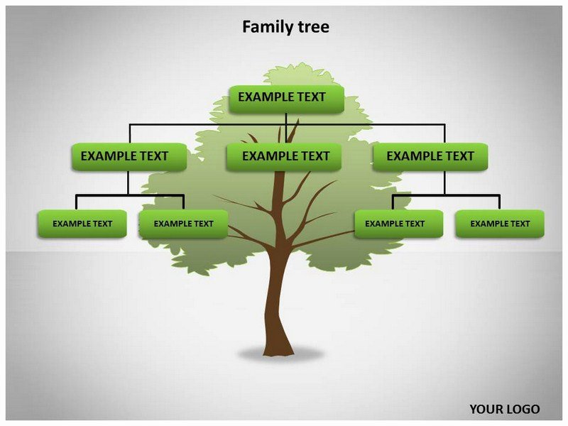 Powerpoint Family Tree Template Beautiful Family Tree Template Family Tree Template Photos Free