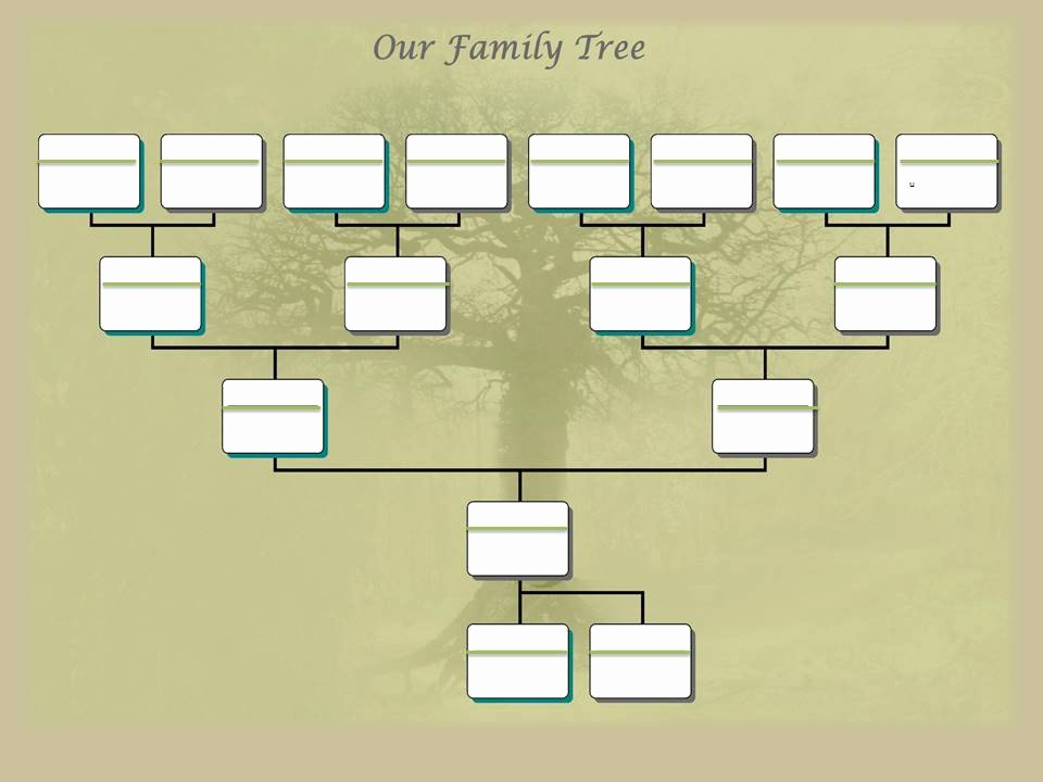Powerpoint Family Tree Template Best Of Family Tree Project Template