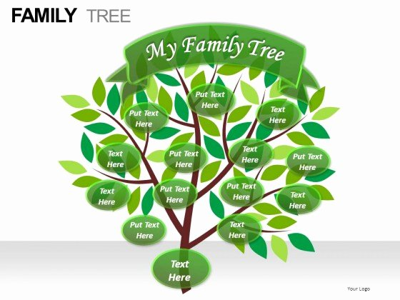 Powerpoint Family Tree Template Elegant Family Tree Powerpoint Presentation Slides