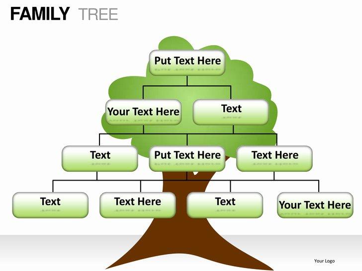 Powerpoint Family Tree Template Fresh Family Tree Powerpoint Presentation Templates