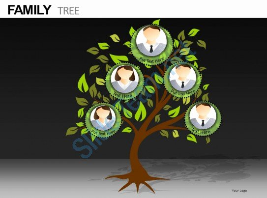 Powerpoint Family Tree Template Lovely Family Tree Powerpoint Presentation Slides Db