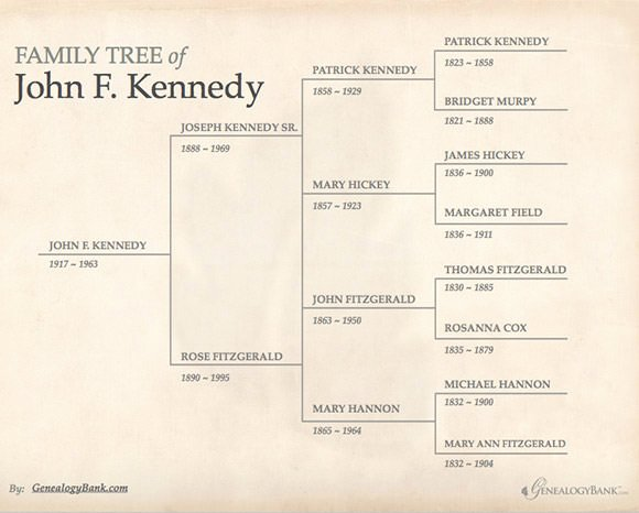 Powerpoint Family Tree Template Luxury Family Tree Template 29 Download Free Documents In Pdf