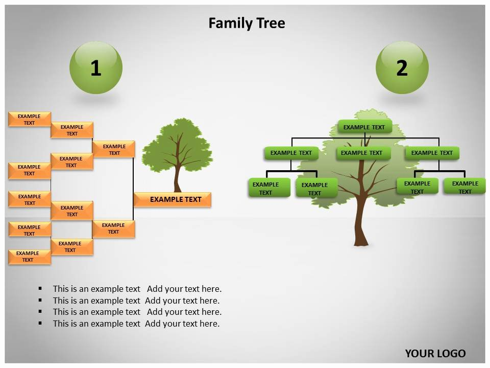 Powerpoint Family Tree Template New Best S Of Family Tree Powerpoint Template Family
