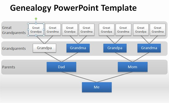 Powerpoint Family Tree Template Unique How to Make A Genealogy Powerpoint Presentation Using Shapes