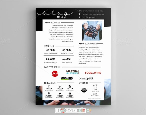 Press Kit Template Word Elegant 11 Press Kit Templates to Download