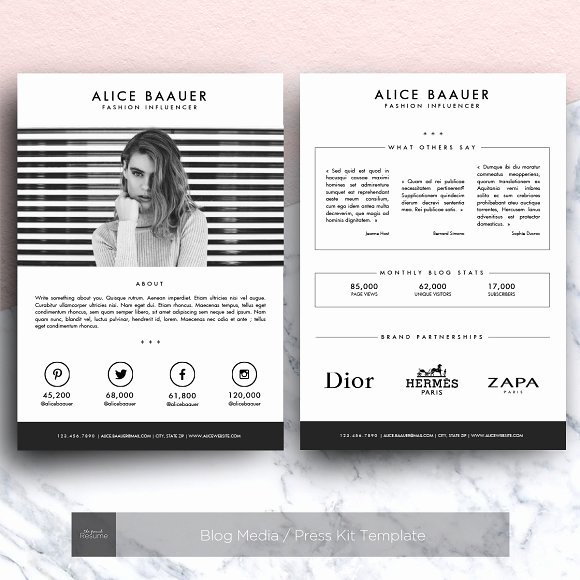 Press Kit Template Word Luxury Blog Media Press Kit Template Presentation Templates