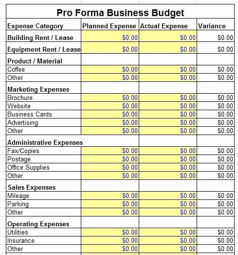 Pro forma Budget Template Awesome Proforma Balance Sheet Template