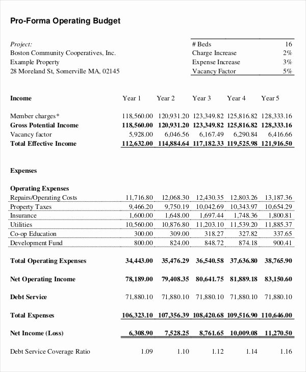 Pro forma Budget Template Beautiful Pro forma Template 9 Free Word Excel Pdf Documents