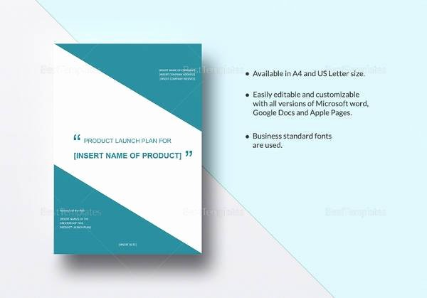Product Launch Plan Template Best Of 12 Product Plan Templates