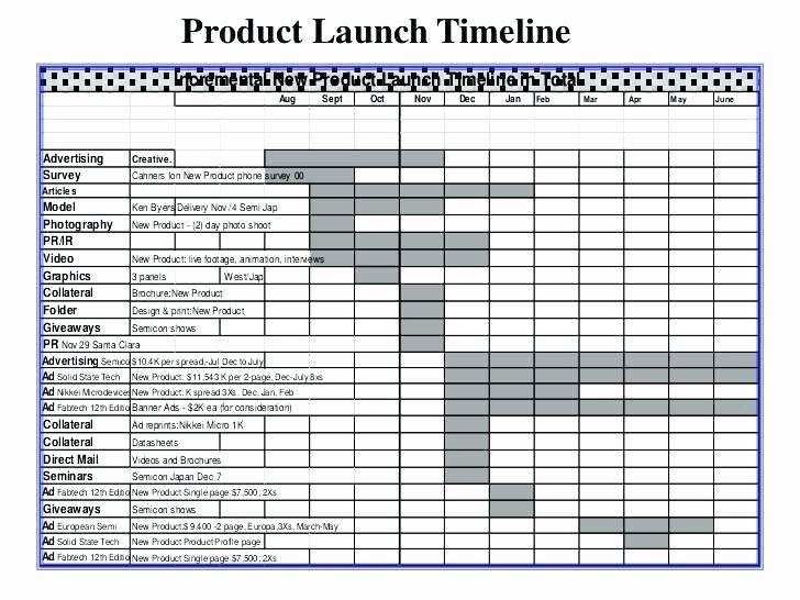 Product Launch Plan Template Elegant New Product Launch Plan Template New Product Launch Plan