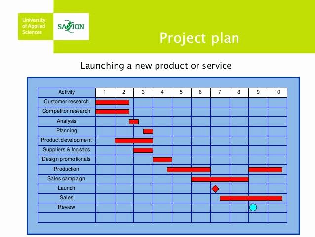 Product Launch Plan Template Unique Product Launch Plan Template Project – Flybymedia