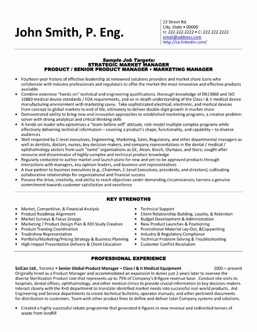 Product Manager Resume Template Unique Product Manager Resume Sample & Template