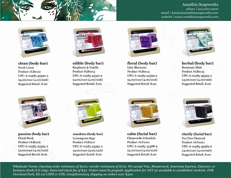 Product Sell Sheet Template Lovely the Bare Necessities Of wholesale Magic