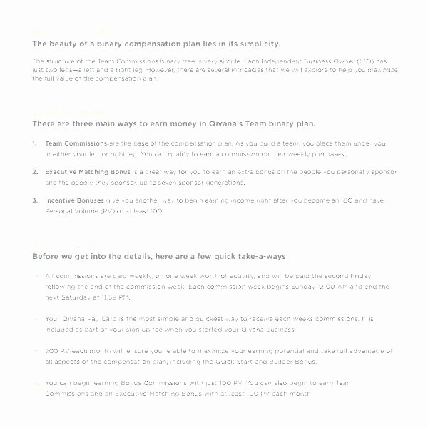 Professional Compensation Plan Template Inspirational Pensation Plan Template Bonus Proposal Template Sales