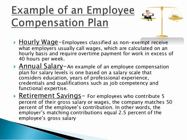 Professional Compensation Plan Template Luxury Pensation Management & It's Objectives