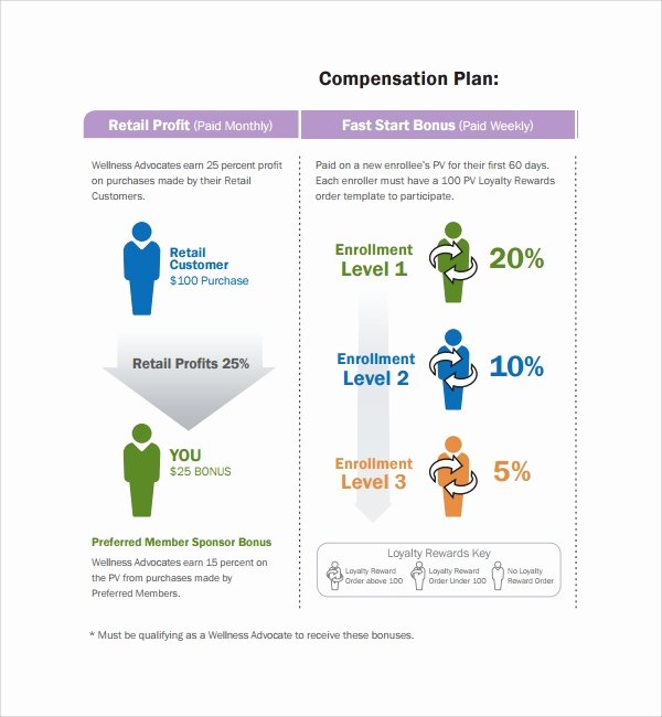 Professional Compensation Plan Template Luxury Sample Pensation Plan Template 8 Free Documents In