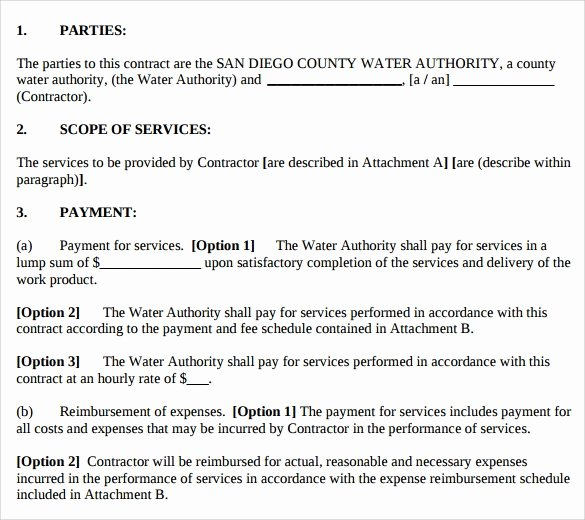 Professional Services Agreement Template Unique Sample Professional Services Agreement 12 Free In Pdf Word