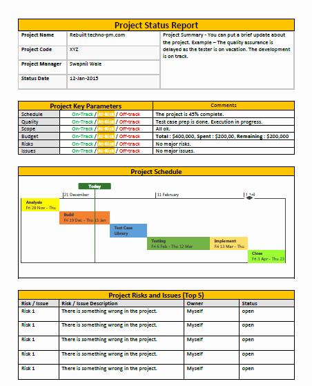 Program Status Report Template Inspirational E Page Project Status Report Template A Weekly Status