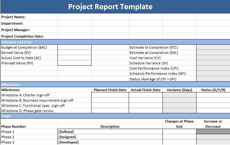 Program Status Report Template Luxury Description Of Project Status Report Template Project