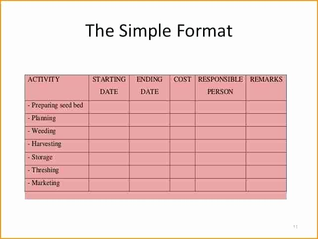 Project Implementation Plan Template Fresh Simple Implementation Plan Template 9 Reasons You Should