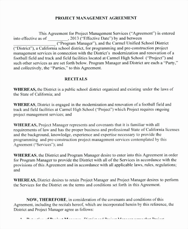 Project Management Contract Template New Project Outline Template Word Free Excel format Ideas