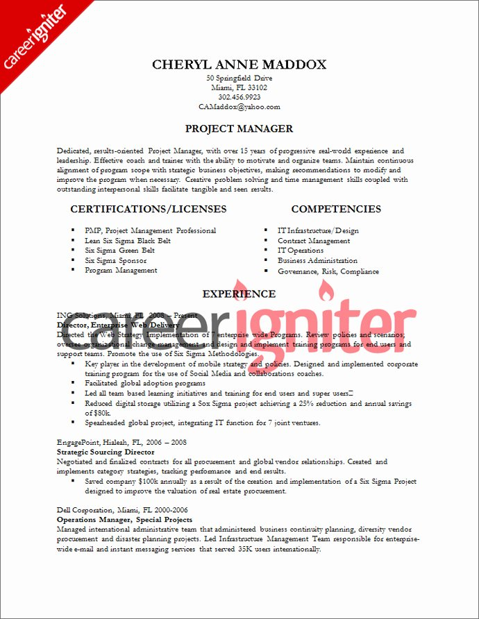Project Manager Resume Template Elegant Project Management Resume Sample