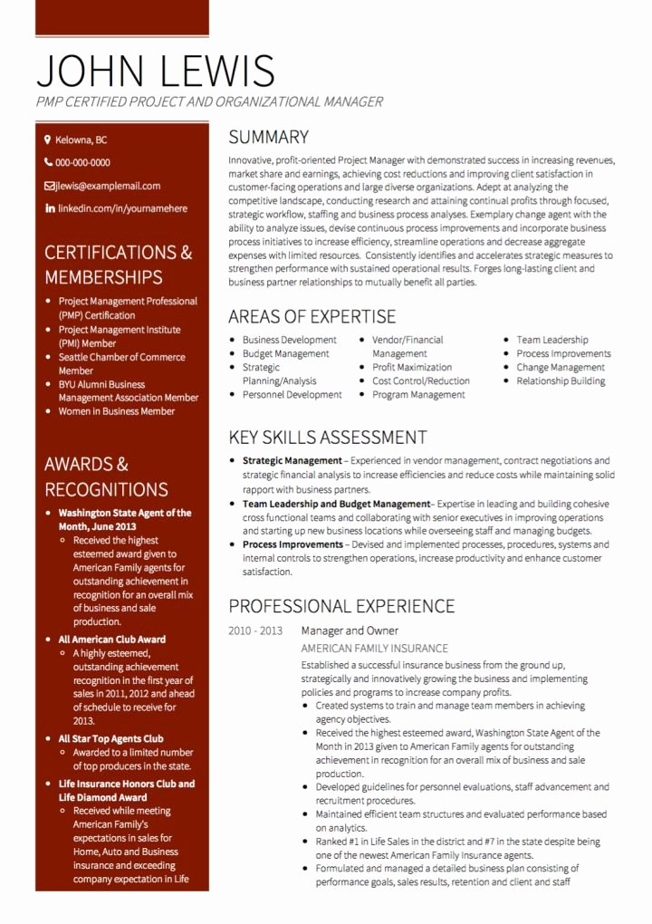 Project Manager Resume Template Elegant Project Manager Cv Examples & Templates