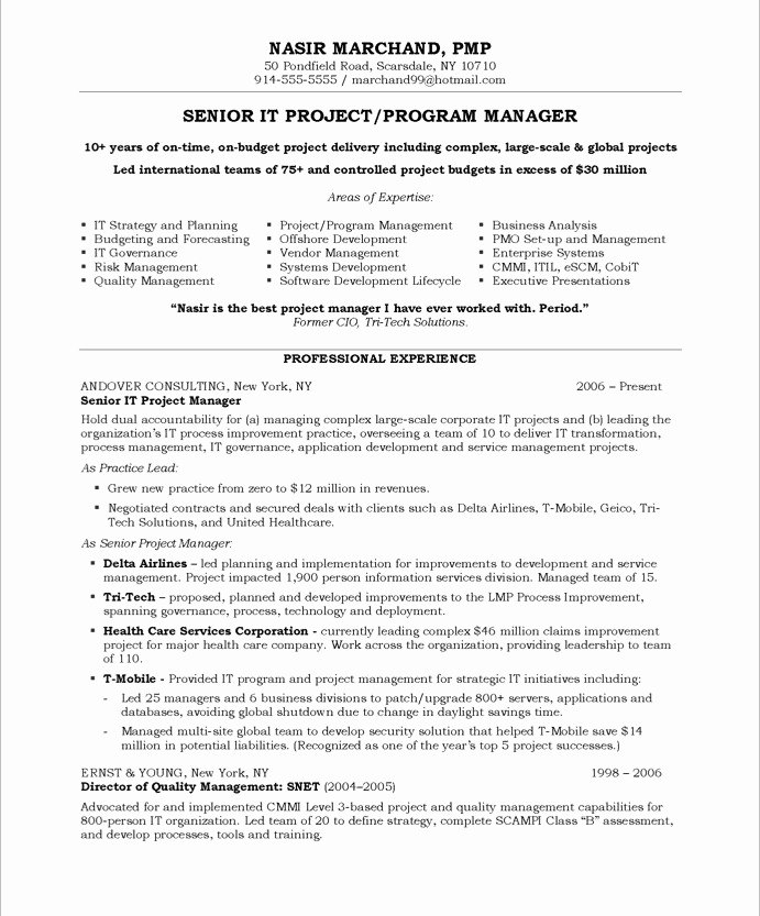 Project Manager Resume Template Elegant Sample Resume for Project Manager