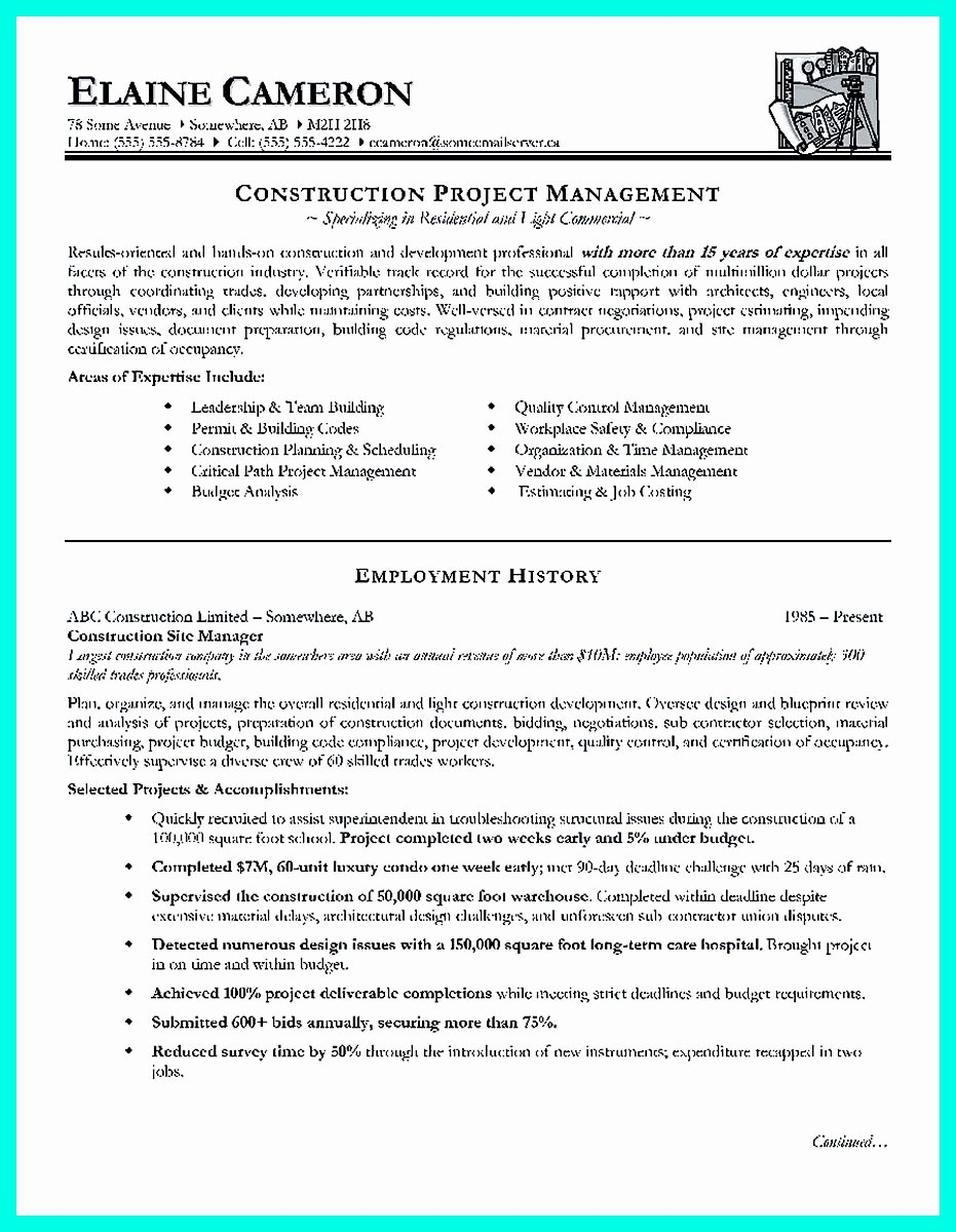 Project Manager Resume Template Unique Project Manager Resume Templates
