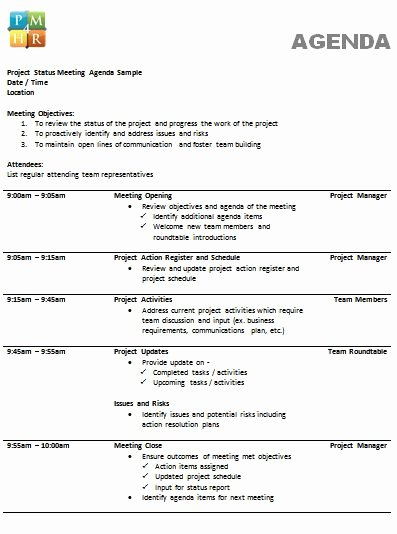 Project Meeting Agenda Template Best Of 205 Professional Meeting Agenda Templates Demplates