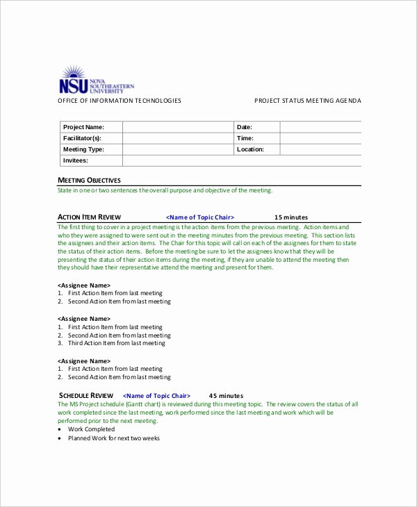 Project Meeting Minutes Template New 9 Project Meeting Agenda Templates Pdf Doc