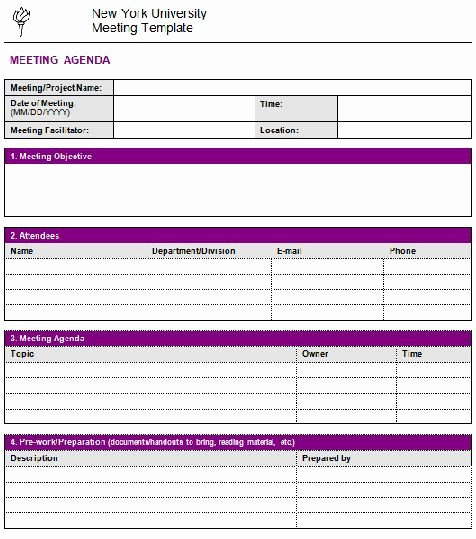 Project Meeting Minutes Template Unique 205 Professional Meeting Agenda Templates Demplates