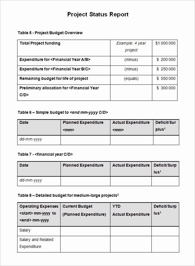 Project Progress Report Template Awesome 11 Project Status Report Examples Pdf