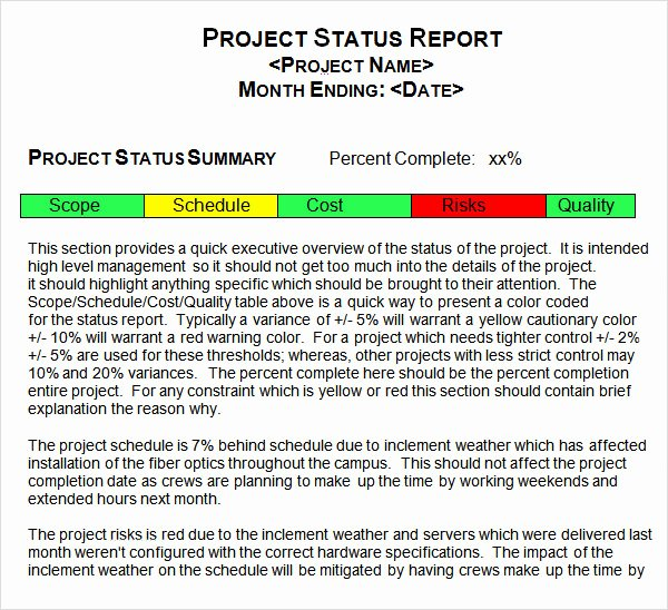 Project Progress Report Template Elegant 14 Sample Useful Project Status Report Templates