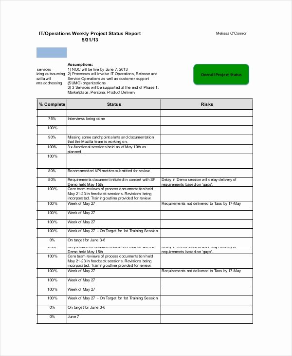 Project Progress Report Template Luxury 19 Printable Project Status Report Templates Google Docs