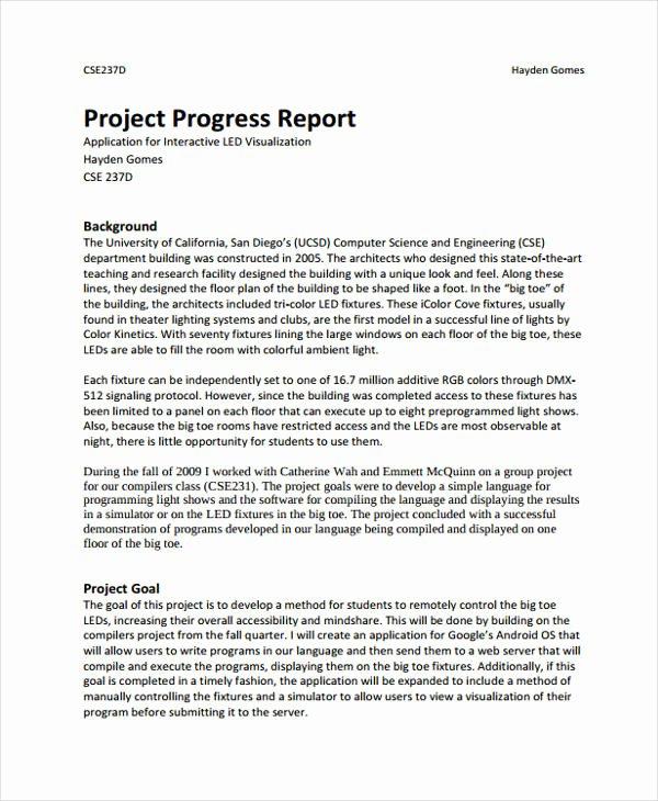 Project Progress Report Template Unique 21 Project Report formats
