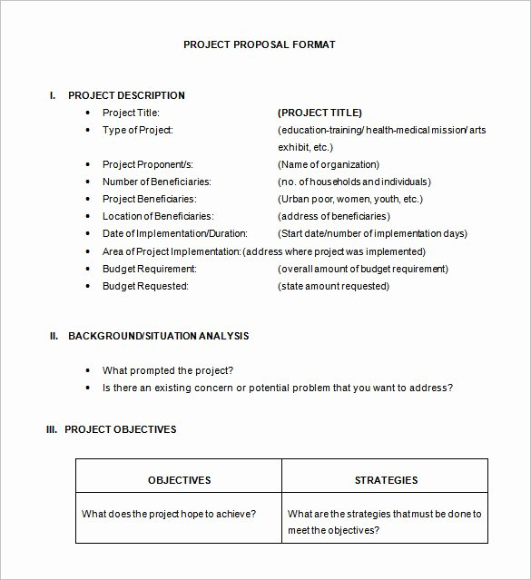 Project Proposal Template Doc Best Of 46 Project Proposal Templates Doc Pdf