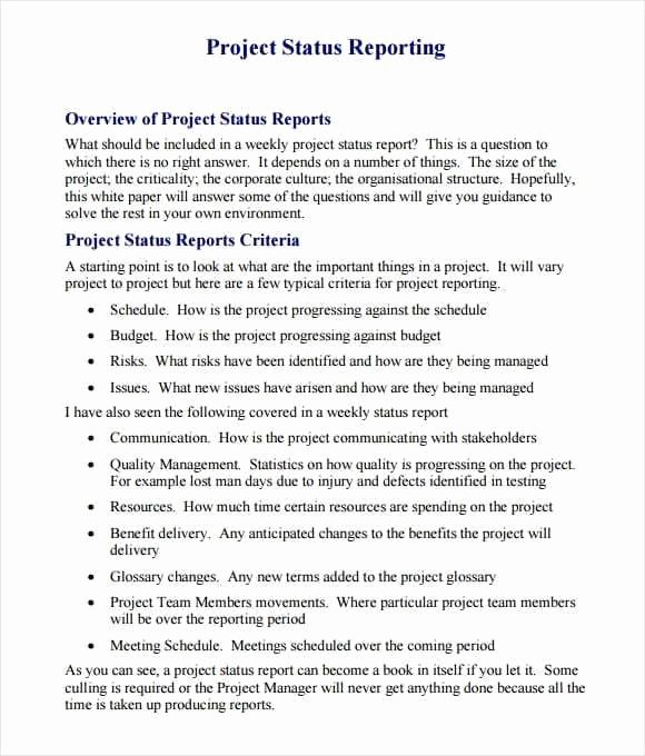 Project Report Template Word Fresh 21 Free Project Report Template Word Excel formats
