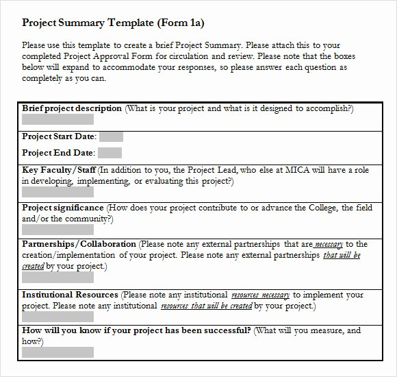 Project Report Template Word Inspirational Sample Project Summary Template 9 Free Documents In Pdf