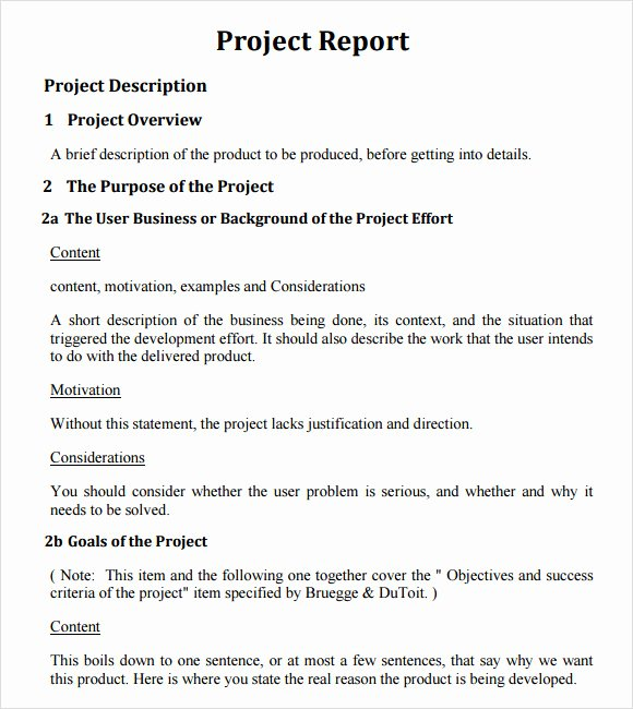Project Report Template Word New 21 Project Report Templates Download Docs Word Pages