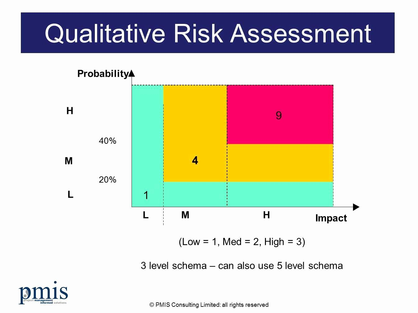 Project Risk assessment Template Lovely Project Risk Management Process