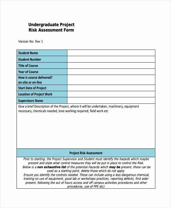Project Risk assessment Template Luxury 37 Risk assessment Templates