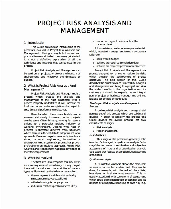 Project Risk assessment Template Luxury 8 Project Risk Management Templates