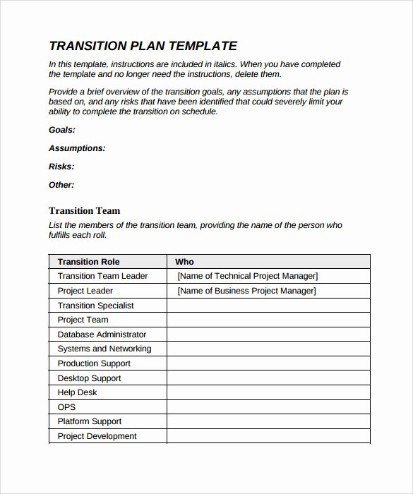 Project Transition Plan Template Awesome 9 Sample Transition Plans – Pdf Word Pages