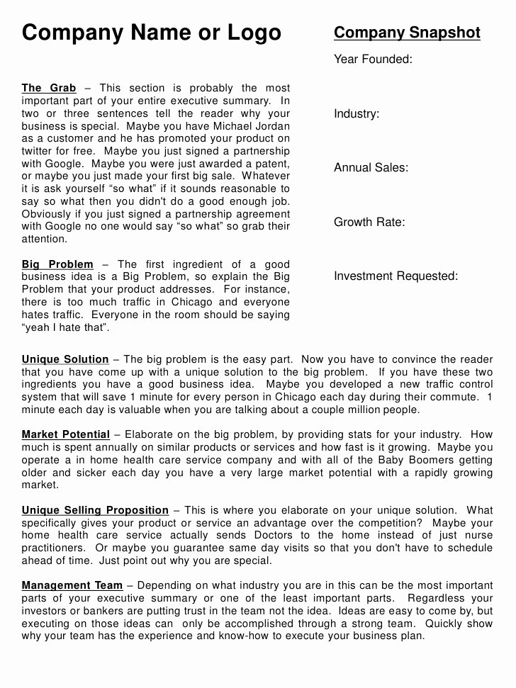 Proposal Executive Summary Template Awesome Executive Summary Template