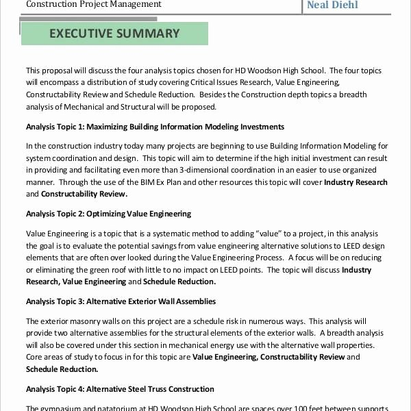 Proposal Executive Summary Template Beautiful Executive Summary Proposal Template Xaoufeiya
