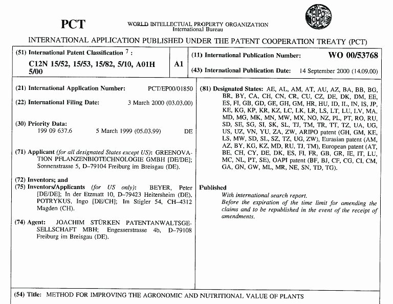 Provisional Patent Application Template Unique Petition Sample Patent Application Template How form Word